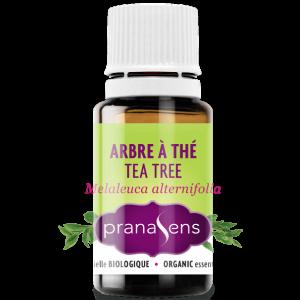 Huile essentielle biologique tea tree